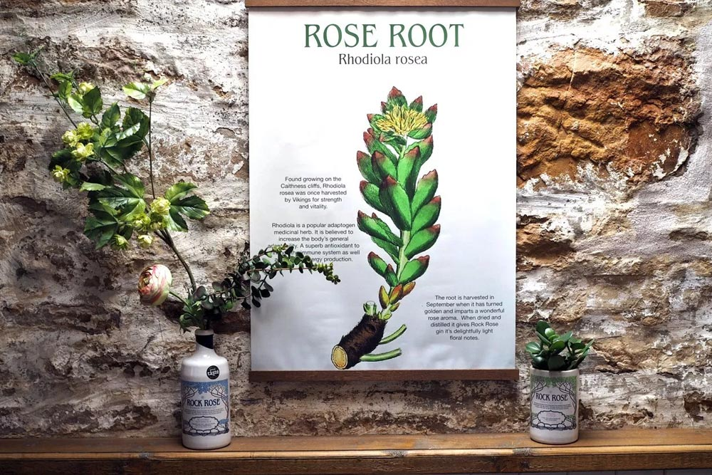 Rock Rose Gin featured by Marie-Eve